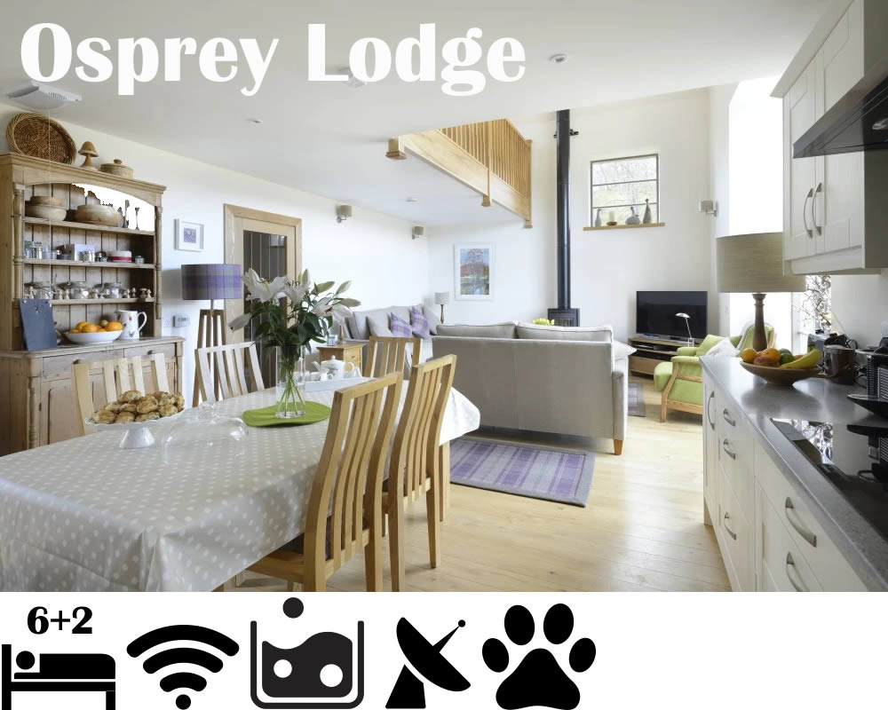 Osprey Lodge - Holiday Let sleeps 8 Kingussie