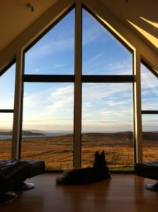 Dog enjoying view from lounge at Stac Polly Cottage