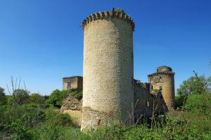 castle roy